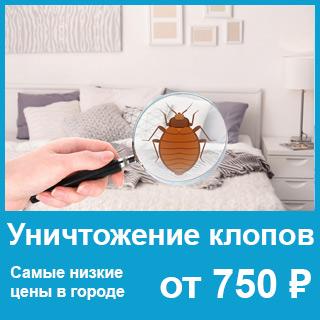 виджет-клопы-750-руб